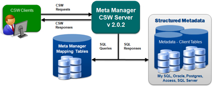 Meta Manager Server Diagram